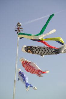 日本儿童节悬挂的鲤鱼旗